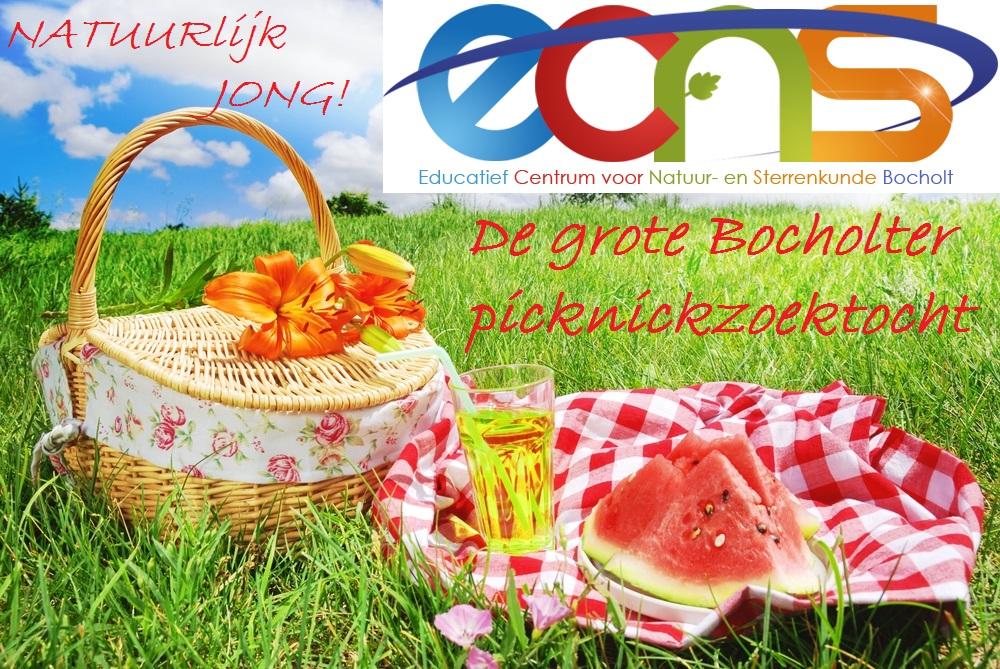 Picknick_zoektocht