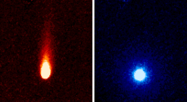 Komeet ISON door de Spitzer ruimtetelescoop  foto: NASA/JPL-Caltech/JHUAPL/UCF
